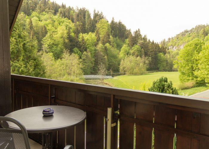 Bild vom Balkon aus der Ferienwohung 2 auf die Wiesent und Wälder von Heroldsberg Tal.
