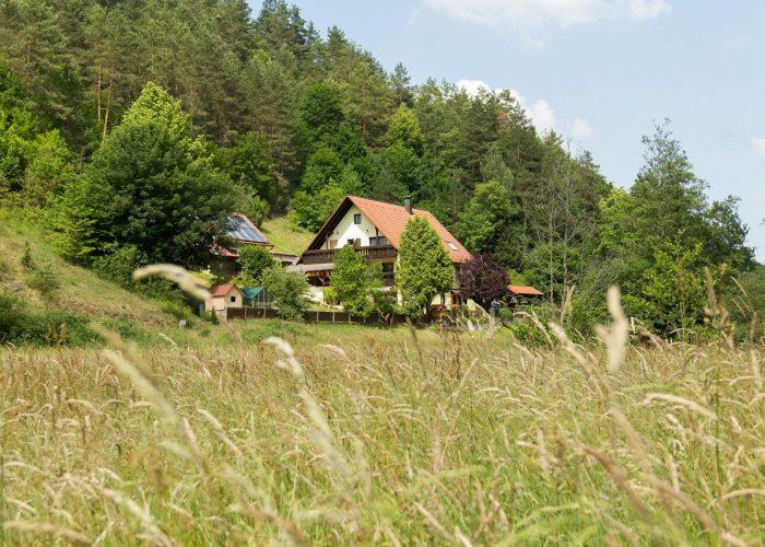 Bild vom Haus Wiesenttal durch das Feld vorm Haus
